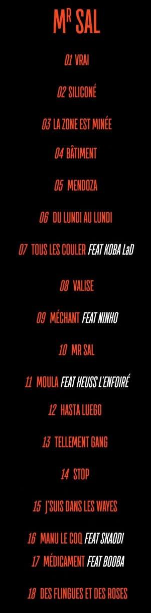 Niska Devoile La Tracklist De Son Album Mr Sal Gentsu